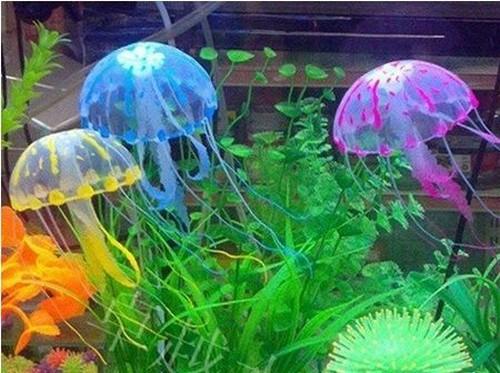 Медузы в аквариуме