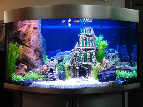 Украшение аквариума искусственными растениями