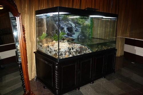 Выбор тумбы под аквариум