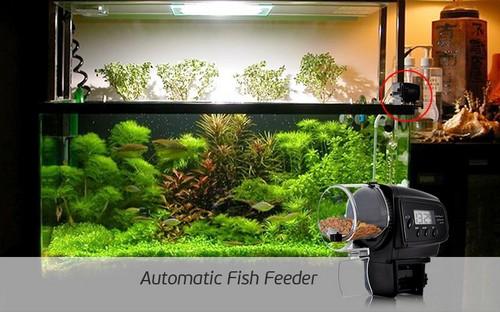 Кормушка для аквариума