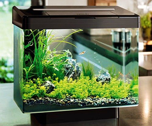 Обзор аквариумных фирм Juwel