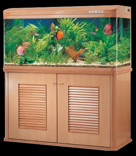 Обзор аквариумных фирм. Jebo
