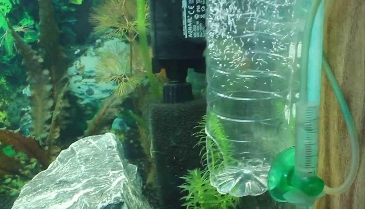 Распылитель воздуха для аквариума своми руками
