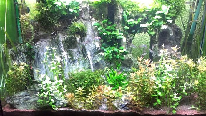 Водопад в аквариуме своими руками