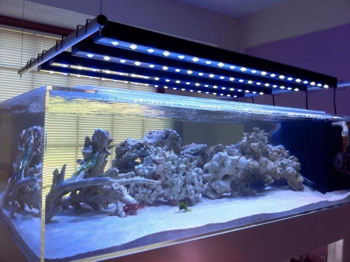 Как самостоятельно сделать светодиодное освещение в аквариуме