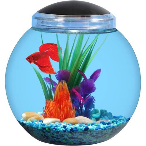 круглый аквариум 1