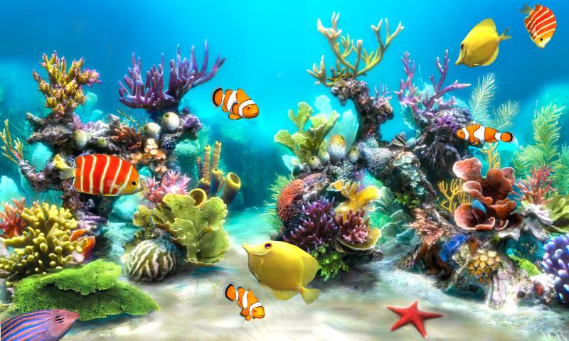 Бесплатные игры онлайн аквариум